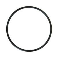 Кольцо уплотнительное фильтра Aquapost