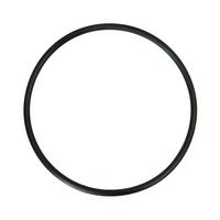 Кольцо уплотнительное BigBlue фильтра Гейзер